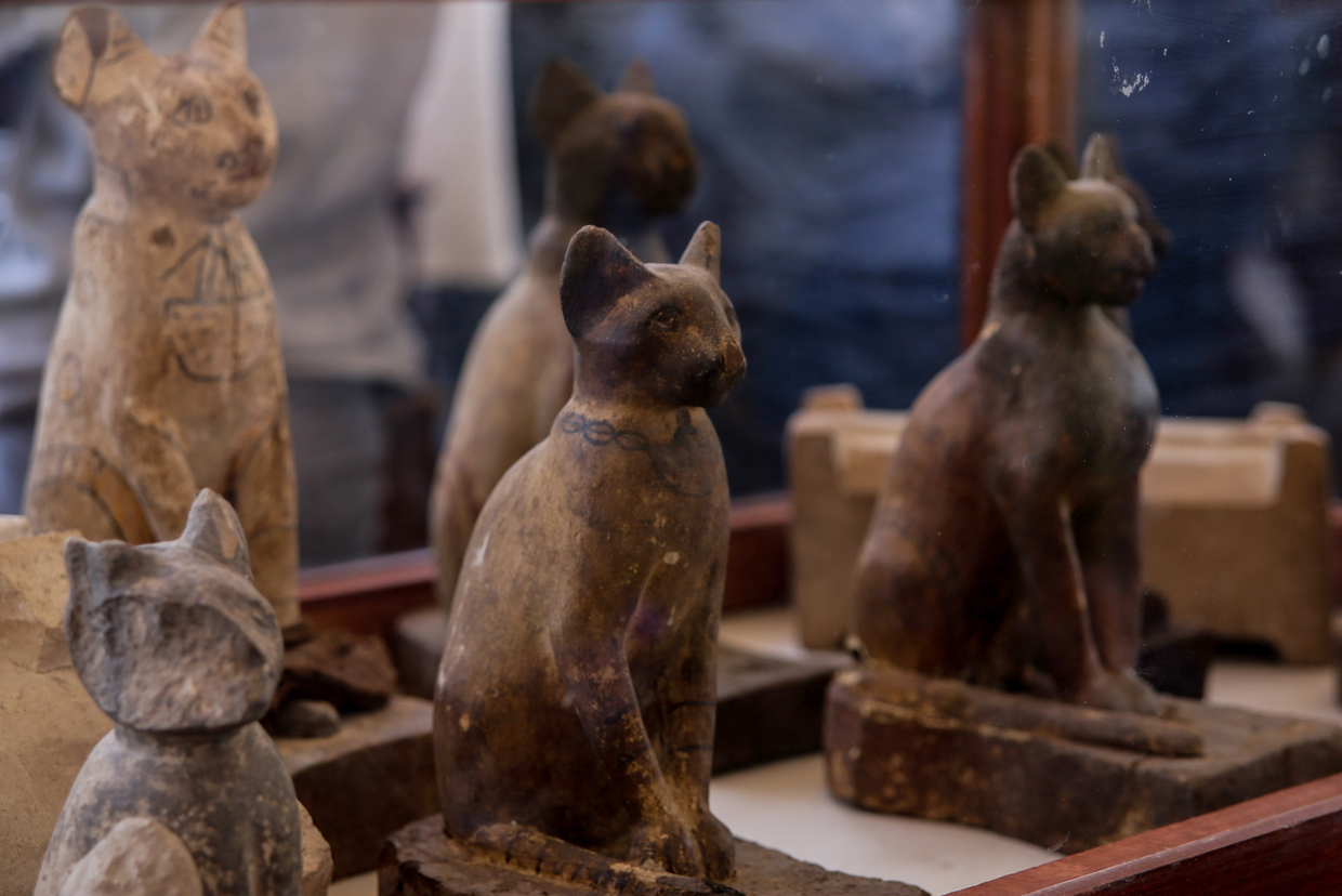 Egypt's Ministry of Antiquities reveals stunning newly-discovered horde of animal mummies