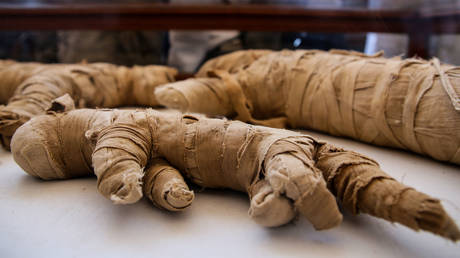 Some of the mummified remains that were unveiled on Saturday. © Global Look Press / Samer Abdallah