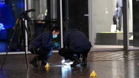 The Hague stabbing victims all underage, suspect still at large – police