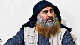 Turkey captured al-Baghdadi's wife and didn't make fuss like US – Erdogan