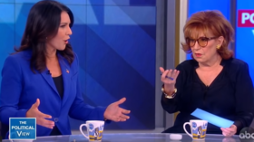 'I served in the war she championed!': Tulsi & The View's Behar face off in tense exchange over Clinton & 'Russian asset' smears