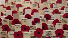 The rainbow poppy? No, thanks. I'll wear the red one to remember EVERYONE who gave their lives