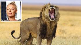 'It pierced through the entire delta!' Maria Sharapova frightened by lion's roar during safari trip (VIDEO)