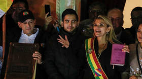 Opposition senator declares herself 'interim president' of Bolivia without quorum or vote