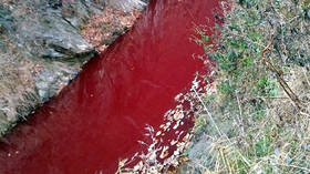Nothing to see here: Rivers along Korean border run red with blood after massive pig cull (PHOTOS)