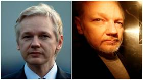 Assange treated as terrorist by UK, it's 'almost murder by state', doctors warn WikiLeaks founder may die in jail