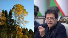 'Professor' Imran Khan lampooned on social media after claiming trees release oxygen at night