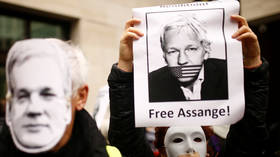 Julian Assange will 'disappear for the rest of his life' inside 'inhumane' US prison, UN envoy warns… if he makes it that far
