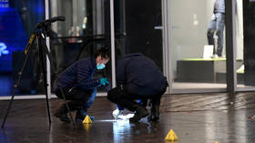 'No indication of terrorism'? The Hague stabbing victims all minors, suspect still at large & motive unclear