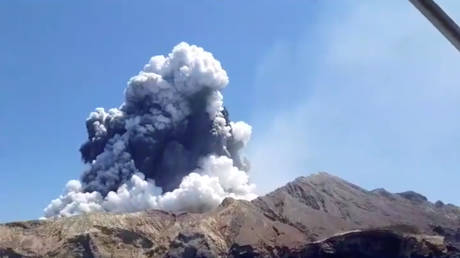 'No signs of life': NZ PM says foreign tourists among those hit by White Island volcanic eruption