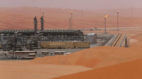 Oil giant Saudi Aramco raises $25.6bn in world's biggest public share listing