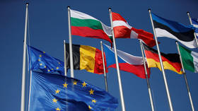 Berlin warns US against interfering in EU affairs, rejects sanctions pressure