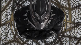 Wakanda nonsense is this? USDA removes fictional Marvel comics nation from free trade list