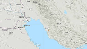 5.1 quake strikes 50km off Iran's Bushehr nuclear power plant – USGS