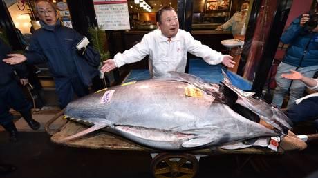 Kiyoshi Kimura displays a 276-kilogram bluefin tuna, January 5, 2020 © AFP / Kazuhiro Nogi