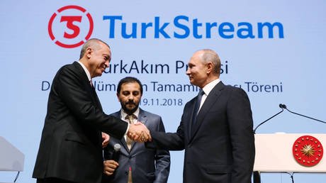 FILE PHOTO: Russian President Vladimir Putin (R) shakes hands with his Turkish counterpart Tayyip Erdogan during a ceremony in Istanbul to mark the completion of a portion of the TurkStream gas pipeline.
