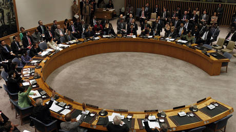 FILE PHOTO: UN Security Council members are seen voting on a resolution.