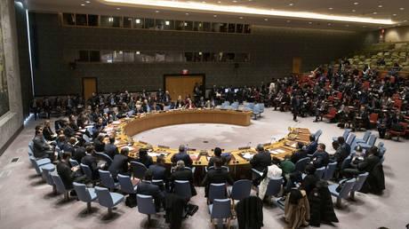 A UN Security Council meeting. © AFP / UN / Mark Garten