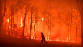 For liberals, it's more fun to blame climate change than arsonists for Australian fires – but arrests show it's not so simple