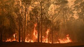 Australian Army tells residents they have 5 MINUTES to pack up and FLEE as uncontrollable fires descend on town