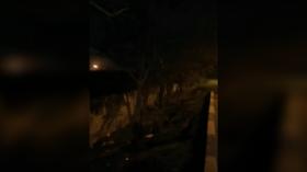 WATCH Ukrainian jet BURNING during minute-long descent before crash near Tehran
