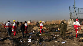 Plane caught fire mid-air, attempted to turn around: Iran issues initial report on Ukrainian airliner crash