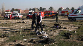 Zelensky calls on public not to speculate about plane crash in Iran, says Ukraine ready to repatriate victims' bodies