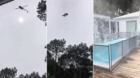 Pigs will fly: Animal carcass hurled into millionaire's pool from chopper in apparent prank (GRAPHIC VIDEO)