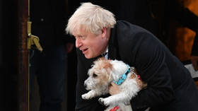 BoJo's 'Parliamentarian of the Year' acceptance speech upstaged by his dog, prompting laughter and anger on Twitter (VIDEO)