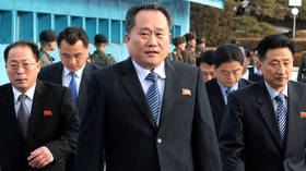 Outspoken former army figure named N. Korea's FM – reports