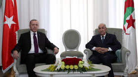 Libya crisis cannot be solved by 'military means,' Erdogan says after Algeria talks