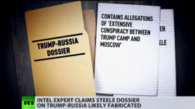 West v. Steele: Trump-Russia dossier was 'FABRICATION,' colleague & spy expert revealed… YEARS ago
