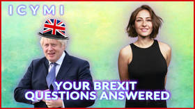 ICYMI: Polly answers the most searched questions about Brexit truthfully(ish) (VIDEO)