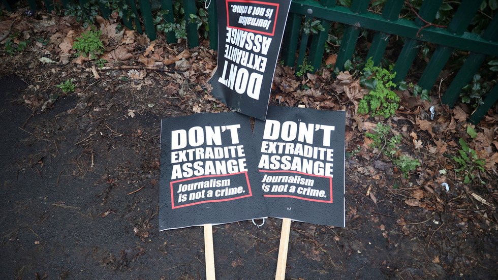 Press freedom will be 'thing of the past' if British help Americans get their way with Assange – Irish MEP