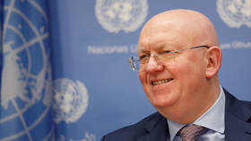 Middle East settlement impossible without Palestine's consent – Russian UN envoy
