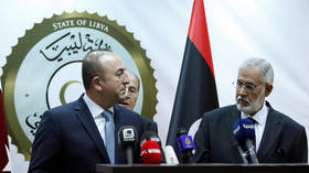 Turkey's guarantees in Libya depend on durable ceasefire – FM Cavusoglu