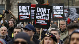 'First they came for Julian, next for you': Waters, Westwood join massive London rally against Assange extradition (PHOTOS)