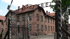 Historical inaccuracy and 'human chess' – Auschwitz Memorial slams Amazon's Nazi-hunting series