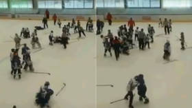 Taking the kid gloves off: Mass brawl between 11yo players breaks out at Russian ice hockey tournament (VIDEO)