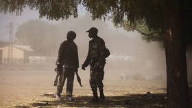 Sweden's govt to send up to 150 troops to join French-led special forces in Mali