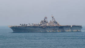 Going down? 2nd coronavirus case confirmed aboard US Navy warship despite 'aggressive mitigation strategy'