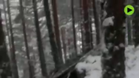Getaway gone awry: Couple flees Сovid-19 Spanish lockdown, gets hypothermia in mountains instead (VIDEO)
