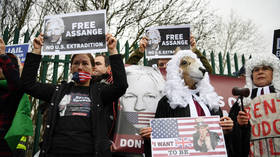 Julian Assange denied bail by London court