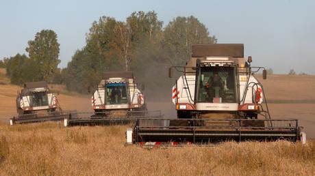 FILE PHOTO. Combines harvest wheat in Krasnoyarsk Region in Russia. ©REUTERS / Ilya Naymushin