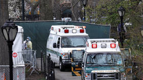 Grim stability: US records almost 2,000 Covid-19 fatalities for 2nd day in a row, as death toll closes in on 15,000