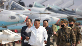 Working dead? Seoul says 'no unusual signs' from North Korea & Kim carrying on duties despite reports of 'grave illness'
