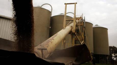 FILE PHOTO: Silos are loaded with barley in a farm near Sydney © Reuters / Daniel Munoz