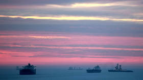 Russian Arctic sea route shipping exceeds 10 million tons in Q1