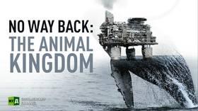 No Way Back: The Animal Kingdom
