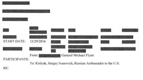 EXPLOSIVE transcripts show Flynn wanted to work with Russia against ISIS, Kislyak warned Trump 'Russiagate' was targeting HIM